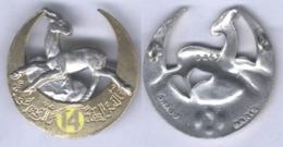 Insigne Du 14e Régiment De Tirailleurs Algériens - Army