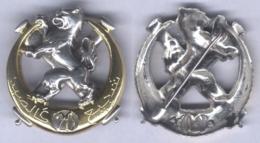 Insigne Du 20e Régiment D'Artillerie Nord Africaine - Esercito