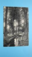 Besproeingsgracht - Moll Maat Villa Louisa Canal D'Irri ( J. Havermans Bakelants Moll ) Anno 1910 ( Zie Foto Details ) ! - Mol