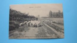 In De HEIDE Beersse ( Ten Voordele Van Werk Der Retrettanten ) Anno 1912 ( Zie Foto Details ) ! - Beerse