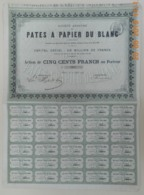 ACTION - S.A. Des PATES à PAPIER DU BLANC Dans L'INDRE - 36 - Du 10 Août 1869 - TRES RARE - Industrie