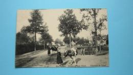 Moll-Esaert Steenweg Naar GHEEL Chaussée De ( J. Havermans-Bakelants ) Anno 19?? ( Zie Foto Details ) ! - Mol