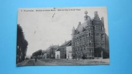 Stadhuis En Groote Markt Hôtel De Ville Et Grand' Place ( F. Smit ) Anno 1911 ( Zie Foto Detail ) ! - Hoogstraten