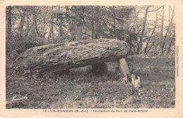 PIE.Z.19-PF.T-786 : LE LION D'ANGERS. MAINE ET LOIRE. LE DOLMEN DU PARC DE L'ISLE-BRIAND - Dolmen & Menhire