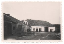 Photo Village LESSE Libin Juillet 1936 FERME Chemin Route En Terre Battue - Libin