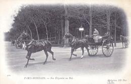 75 - PARIS Mondain - Nos Elegantes Au Bois - Femme Cocher - Frankreich