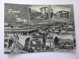 """Cartolina Viaggiata """"FORNACI DI BARGA ( Lucca )""""  1962 - Italia"""