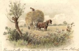 Fantaisie - Agriculture - Attelage - Les Foins - A.&.M.B.  N° 437 - C 9194 - Landbouw