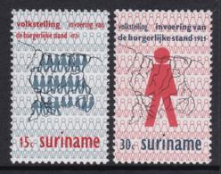 PAIRE NEUVE DU SURINAM - PREMIER RECENSEMENT ET INSTITUTION DE L'ETAT CIVIL N° Y&T 543/544 - Autres