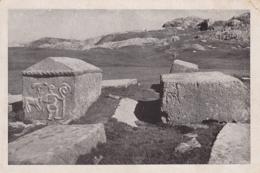 Dolmen Menhir -  Bogumil Necropolis At Mountain Cvrsnica Bosnia - Dolmen & Menhire