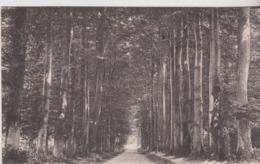 76 - CP MOTTEVILLE  ROUTE DE LIMESY - Andere Gemeenten