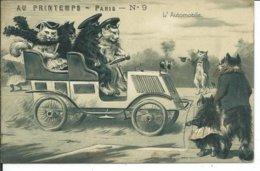Chats Gauffrés-L'automobile - Chats