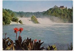 Rheinfall, Schweiz, Switzerland, 1967 Used Postcard [23492] - SZ Schwyz