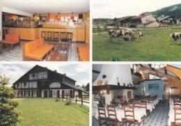 25 Métabief, Eté - Hiver, Vacances PTT - Franche Comté, Multivues - Autres Communes