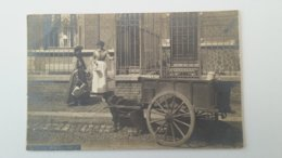 NAMUR - LATIERE NAMUROISE - ATTELAGE DE CHIENS - CARTE PHOTO 1908 - Namen