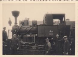 Forest Train Locomotive A4 SHGdd ( Gutmann Co Belisce Croatia ) - Trenes