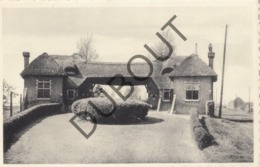 Postkaart/ Carte Postale Sint-Katelijne-Waver Ingang Kerkhof    (O917) - Sint-Katelijne-Waver