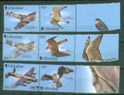Gibraltar: 2000   Wings Of Prey (Series 2)   MNH - Gibraltar