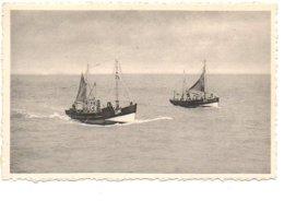 Oostende Vissersboot 0.46 Barque De Pêche Bateau Boot Boat Schip Schif Ship Fishing  Ostend Ostende - Oostende