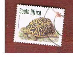 SUD AFRICA (SOUTH AFRICA) - SG 1013 - 1997 ENDANGERED ANIMALS: GEOMETRIC TORTOISE  - USED - Usati