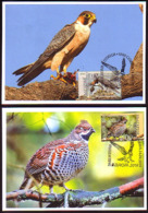 BULGARIA \ BULGARIE - 2019 -  Europa-SEPT - Oiseaux Protégés  - 2 MC  Tir.10 Exe.  Rare - Bulgarie