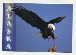 USA - AK 361241 Alaska - Eagle - Otros