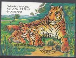 Rossija 1992 Michel Bloc Feuillet 1 O Cote (2008) 1.30 Euro Tigre De Sibérie Cachet Rond - Blocs & Feuillets