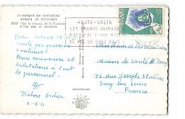 Haute Volta Timbre Sur Carte Sur Le Chemin De La Fontaine CPSM PF Flamme Les Grands Animaux à Une Nuit De Vol - Haute-Volta (1958-1984)