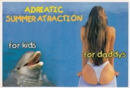 Pin Up Sexy Woman Delphin Delfin Summer Atraction Postcard - Pin-Ups