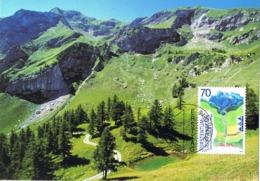 33889. Tarjeta Maxima VADUZ (Liechtenstein) 2002. International JARH Der BERGE - Cartas Máxima