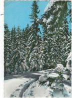 39   Le Haut Jura En Hiver Cachet De Depart  Les Rousses    Piste Dans La Neige - Autres Communes