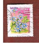 SUD AFRICA (SOUTH AFRICA) - SG 1297   -   2001  FLORA: BLUE MARGUERITE  (NINGIZIMU AFRIKA ) - USED - África Del Sur (1961-...)