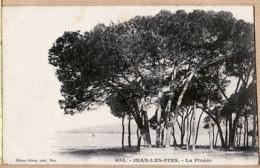 X06111 GILETTA 654 - JUAN-LES-PINS 1910s La Pinède Alpes Maritimes Etat PARFAIT Antibes - Antibes