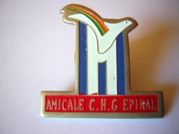 PINS PIN  Amicale CHG EPINAL  Hopital  88 Vosges Colombe - Städte