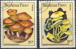 Burkina Faso 1985. ~ YT 677/78 - Champignons - Burkina Faso (1984-...)