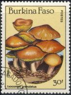Burkina Faso 1985. ~ YT 678 - Ixcomus Granulatus - Burkina Faso (1984-...)
