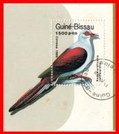 GUINEA BISSAU PALOMA Y AVES - Guinea-Bissau