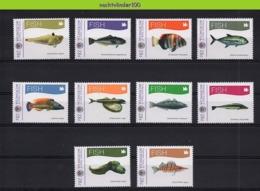 Nff013 FAUNA VISSEN FISH FISCHE POISSONS MARINE LIFE MICRONESIA 2012 PF/MNH - Fische