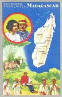 Les Colonies Françaises: Madagascar - Publicité: Edition Des Produits Du Cirage Le Lion Noir - Publicité