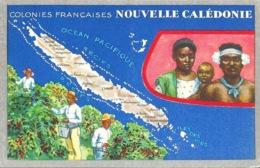 Les Colonies Françaises: Nouvelle Calédonie - Publicité: Edition Des Produits Du Cirage Le Lion Noir - Publicité