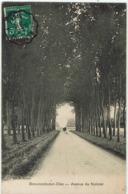 D - CPA - 95 - BEAUMONT SUR OISE - Avenue De Nointel - 1913 - - Beaumont Sur Oise