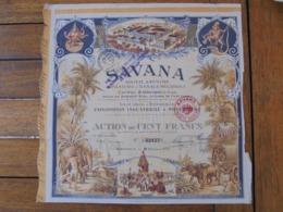 INDE, PONDICHERY 1924 - SAVANA - ACTION DE 100 FRS - TRES BELLE ILLUSTRATION, MAIS TITRE EN MAUVAIS ETAT- VOIR SCAN - Acciones & Títulos