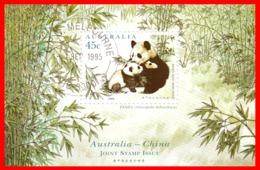 AUSTRALIA ,2 HOJITA MINI PANDA, AÑO 1995 - Hojas Bloque
