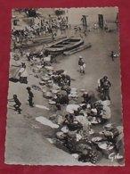 A.O.F.- Laveuses Sur Le Milo ::: Lavandières - Afrique  ------- 504 - Guinée