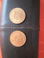 2 Pieces 20 Francs Marianne Or - Or