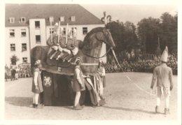 Photo Foto (11 X 16 Cm) 21 OFLAG II Camp De Prisonniers Cortège ? Carnaval ? Stoet ? Ros Beiaard Van Dendermonde - Guerre 1939-45