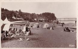 MAUVES - La Plage Et Les Côteaux - Mauves-sur-Loire