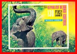 GUINEA ECUATORIAL HOJITA AÑO 1973 - Guinea Ecuatorial