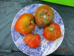 25 Graines De Tomates Coeur De Boeuf Cultivé Bio En Serre Et En Pleine Terre Sans Bouillie Bordelaise - 2. Samenkörner