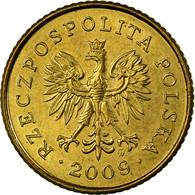 Monnaie, Pologne, Grosz, 2009, Warsaw, SUP, Laiton, KM:276 - Pologne